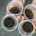 The Science of Tea: Four kinds